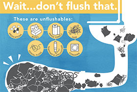 http://www.metrovancouver.org/about/departments/DepartmentNewsImages/UnflushablesInfographic.jpg, Is it flushable?