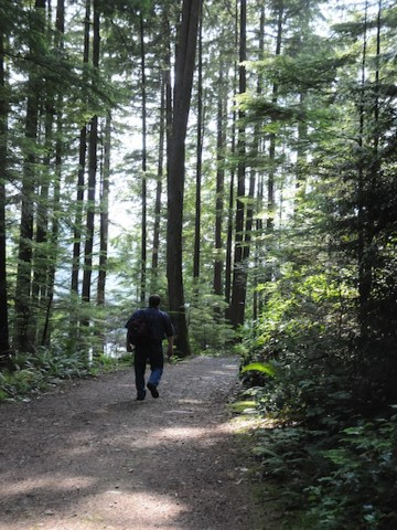 Trails of Belcarra Regional Park draw hikers and recreationists from around the region