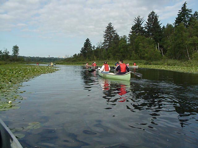 Canoeing is one of the best ways to explore Burnaby Lake Regional Park.