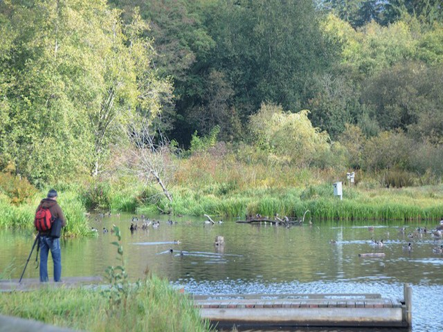 Burnaby Lake is home to thousands of waterfowl, and birds nesting in marsh