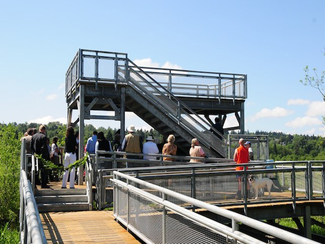 A rebuilt Burnaby Lake viewing tower was officially opened in 2009, and is now one of the best places on the lake for wildlife viewing