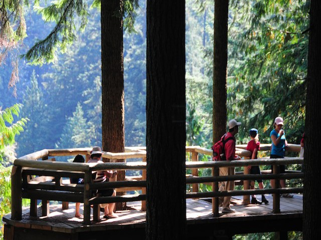 A viewing platform is a great place for a rest and a snack in Capilano River Regional Park