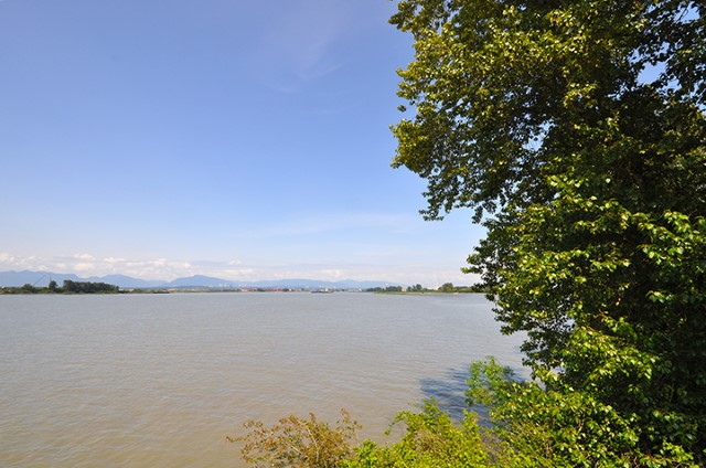 Looking east from the viewing tower at Deas Island Regional Park, one can see the broad reach of the south arm of the Fraser River as well as distant mountains of the Coast Range.