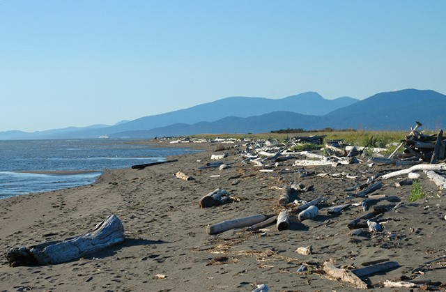 The views from Iona Beach Regional Park are incredible -- 360 degrees of mountains, ocean and islands.