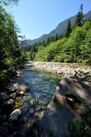 The creek, forest, mountains and sky combine in mesmerizing shades of blue and green on a summer's day at Lynn Headwaters Regional Park.