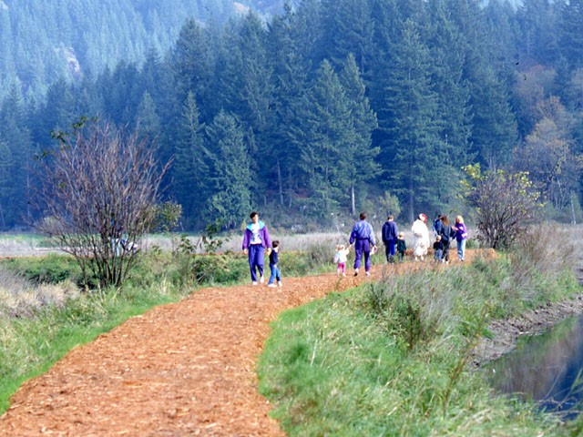 A network of loop trails take visitors from Minnekhada Lodge and around the marsh